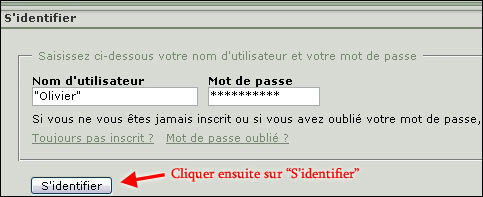 http://www.allo-olivier.com/Photos-Forum/Explications/Le_Forum_02.jpg