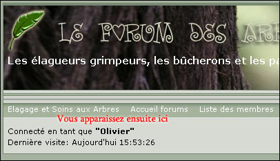 http://www.allo-olivier.com/Photos-Forum/Explications/Le_Forum_03.jpg