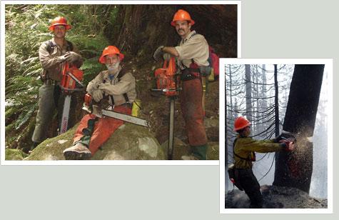 http://www.allo-olivier.com/Photos-Forum/Mes-Photos/Pompiers-USA-2.jpg