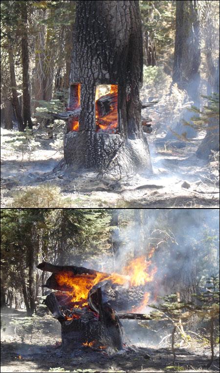 http://www.allo-olivier.com/Photos-Forum/Mes-Photos/Pompiers-USA.jpg